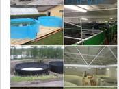 Zivju rūpniecība Iekārtas zivju pavairošanai, cena 800 €, Foto