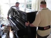 Музыка,  Музыкальные инструменты Клавишные, цена 20 €, Фото
