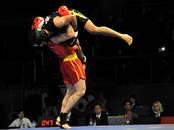 Спорт, активный отдых Единоборства, Фото
