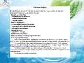 Kursi, izglītība,  Kursa darbi, referāti, diplomdarbi Mājas darbi, cena 0.50 €, Foto