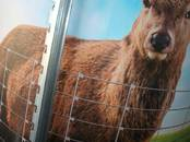 Животноводство Оборудование для пастбищ, цена 6.05 €, Фото