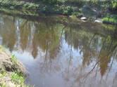 Земля и участки,  Огре и р-он Икшкиле, цена 109 000 €, Фото
