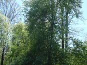 Земля и участки,  Огре и р-он Икшкилес с. т., цена 83 000 €, Фото
