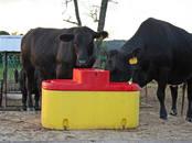 Lopkopība Aprīkojums govju kūtīm, cena 355 €, Foto