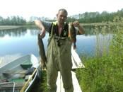 Medības, zveja Makšķerēšanas vietas, cena 150 €, Foto