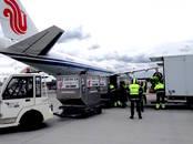 Kravu un pasažieru pārvadājumi Avio pārvadājumi, cena 100 €, Foto