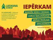 Mežs,  Valmiera un raj. Cits, Foto