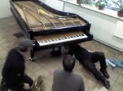 Mūzika,  Mūzikas instrumenti Dažādi, Foto