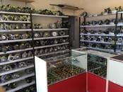 Бульдозеры, цена 80 €, Фото