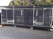 Suņi, kucēni Dažādi, cena 85 €, Foto
