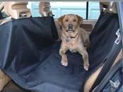 Suņi, kucēni Aksesuāri, cena 12.85 €, Foto