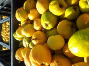 Сельское хозяйство Семена и рассада, цена 0.90 €, Фото
