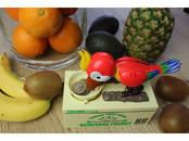 Rotaļas, šūpoles Elektroniskās rotaļas, cena 20 €, Foto