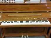 Музыка,  Музыкальные инструменты Клавишные, цена 9 300 €, Фото