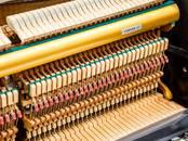 Музыка,  Музыкальные инструменты Клавишные, цена 3 500 €, Фото