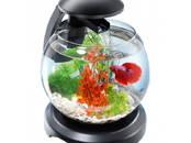 Рыбки, аквариумы Аквариумы и оборудование, цена 44.99 €, Фото