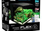 Рыбки, аквариумы Аквариумы и оборудование, цена 117 €, Фото