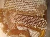 Продовольствие Мёд, цена 7 €/литр, Фото