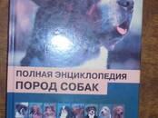 Suņi, kucēni Aksesuāri, cena 5 €, Foto