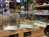 Zivtiņas, akvāriji Akvāriji un aprīkojums, cena 16 €, Foto