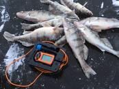 Охота, рыбалка Эхолоты, цена 130 €, Фото