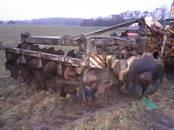 Lauksaimniecības tehnika,  Augsnes apstrādes tehnika Lobītāji, Foto