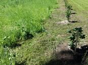 Сельское хозяйство Сельхозработы, цена 30 €, Фото