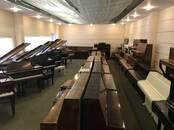 Музыка,  Музыкальные инструменты Клавишные, цена 600 €, Фото