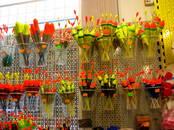 Medības, zveja,  Makšķeres un piederumi Zvejas rīki, pludiņi, āķi, cena 2.80 €, Foto