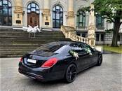 Transport's rent For weddings and celebrations, price 25 €, Photo