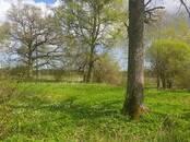 Mežs,  Bauska un raj. Bauska, Foto