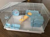 Rodents Cages and accesories, price 16 €, Photo