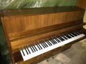 Музыка,  Музыкальные инструменты Клавишные, цена 6 €, Фото