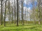 Mežs,  Valmiera un raj. Valmiera, Foto