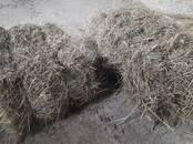Животноводство Корм, цена 1.70 €/шт., Фото