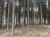 Лес,  Прейли и р-он Сутрская вол., Фото