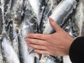 Продовольствие Рыба и рыбопродукты, цена 1.50 €/кг., Фото