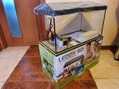 Zivtiņas, akvāriji Akvāriji un aprīkojums, cena 78 €, Foto
