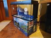 Рыбки, аквариумы Аквариумы и оборудование, цена 54 €, Фото