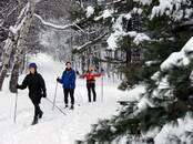 Спорт, активный отдых Беговые лыжи, цена 175 €, Фото