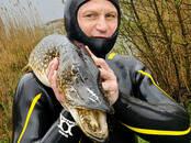 Medības, zveja Zemūdens medības, cena 235 €, Foto