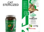 Cats, kittens Feed, price 15 €, Photo