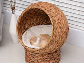 Cats, kittens Accessories, price 69 €, Photo